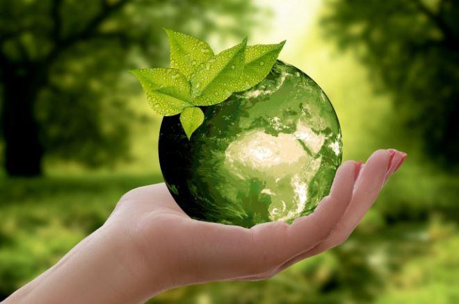 Fachtag zur Nachhaltigkeitsbildung